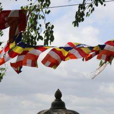 The Buddhist Flag