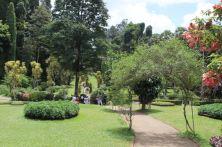 Peridenaya Royal Botanic Garden