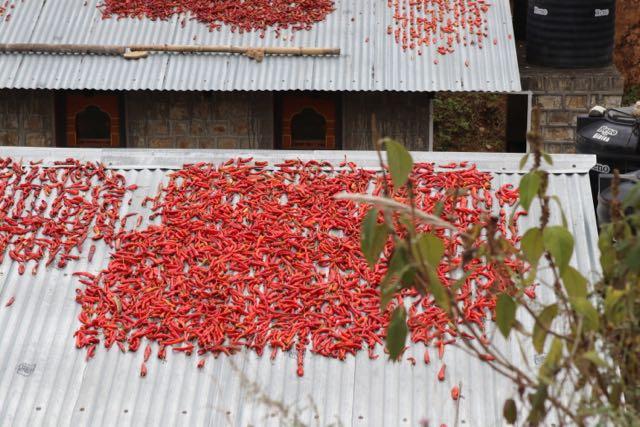 Blog_BhutanArrivalFirstDay - 12 of 26