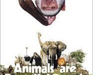 animals beautiful people