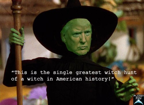 Trump witch