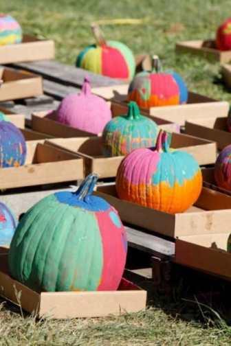 Painted pumpkins at Terhune Orchards.
