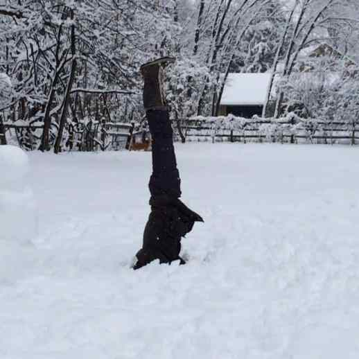 Princeton Center for Yoga and Health Teacher Louise Profit practices handstands in the snow Monday.