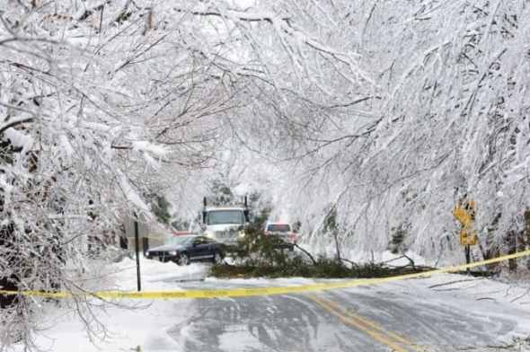 Ice storm, February 5, 2014.  Down tree and power line on Elm Ridge Rd, Hopewell, blocked traffic all day. Thanks very much to the hardworking crew who eventually cleared it. Credit: Glenn Cantor.