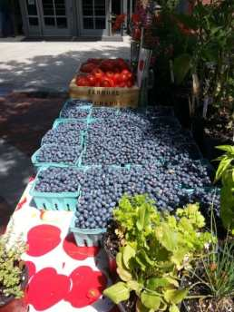 It's blueberry season at the Princeton Farmers' Market.
