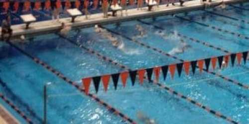Princeton University Men 39 S Swimming And Diving Season Over Planet Princeton