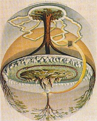 Flat Earth Tree of Life The UN Flag Aplanetruthinfo