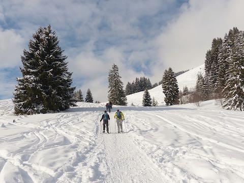Excursiones con raquetas de nieve