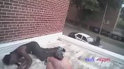 Bodycam Captures Rooftop Shooting Of An Unarmed Man By Milwaukee Officers!
