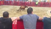 Whoa: Dude Gets Destroyed After Taunting A Bull!