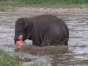Guy Pretending He Couldn't Swim While Floating Down A River Gets Saved By A Young Elephant!
