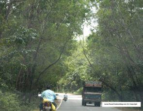 Hubli to Karwar - beautiful drive through the western ghats