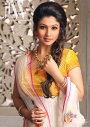 chic hairstyles south indian