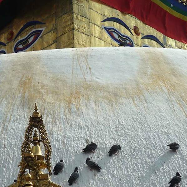 P1090682 bouddha QUAD