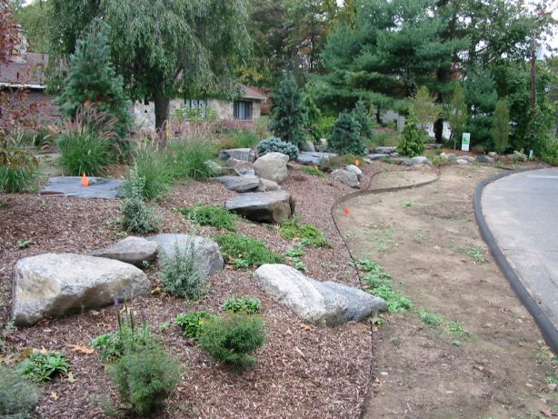 Green Site and Landscape Design