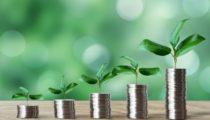 これから資産運用に挑戦する人が知っておきたい投資の種類と基礎知識