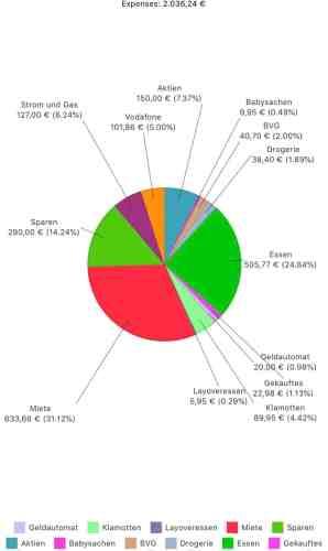 Haushaltsbuch, Ausgaben pro Monat, planningmathilda