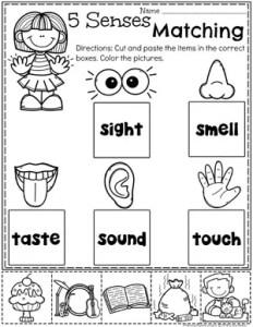 5 Senses Worksheets for Preschool #5senses #preschoolworksheets #planningplaytime