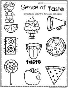 Preschool 5 Senses Worksheet - Sense of Taste #5senses #preschoolworksheets #planningplaytime