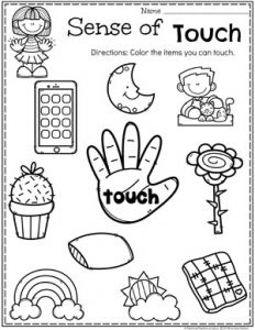 The Five Senses Worksheets For Preschoolers Preschool