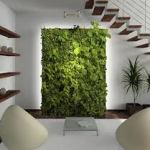What are living walls | Benefits of living walls