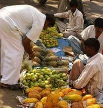 Informal Sector in India