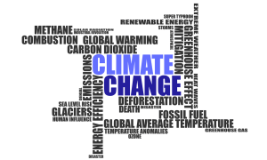 India and UN Framework Convention on Climate Change (UNFCCC)