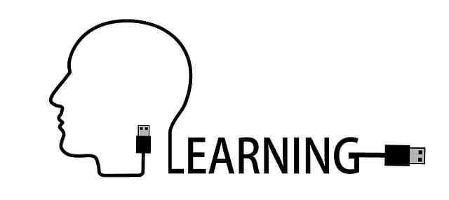 Motivating Students towards Virtual Learning Environment