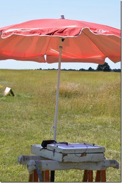 Starter Malzeville Parasol et planche de vol vol à voile