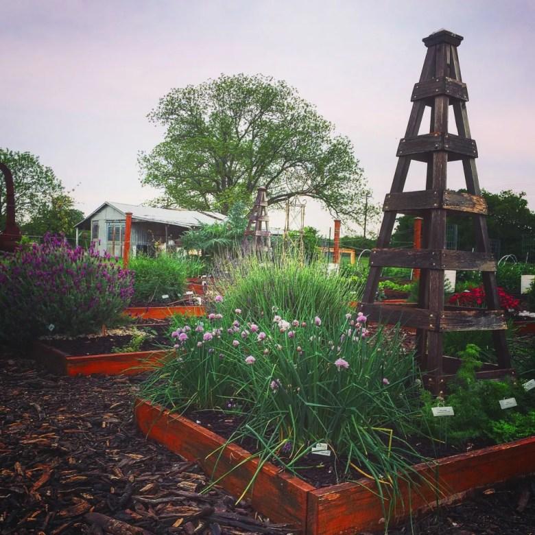 Collin-County-Master Gardeners-2017-Garden-Show