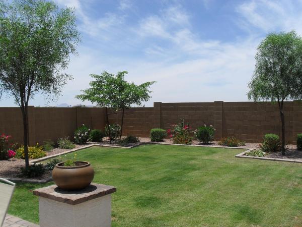 Arizona Back Yard Landscape Ideas