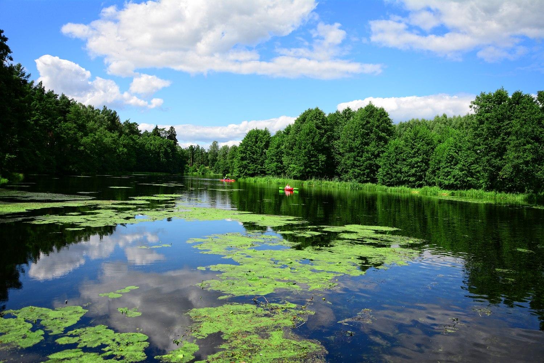 kayaking in poland river wda clear river in poland