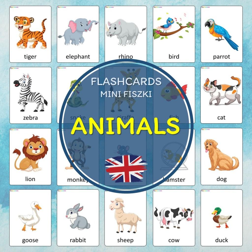 animals zwierzęta flashcards fiszki do nauki języka angielskiego