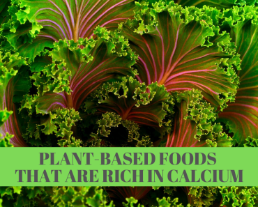 Plant-Based Foods Rich in Calcium