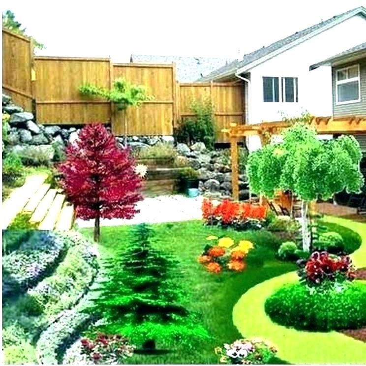 3d Landscape Design Professional Design Plant Pk