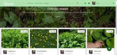 onkruidcatwalk tuinschool online