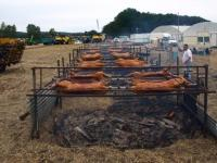Rural Life: Large scale pig roasts