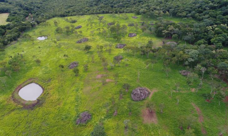 Polícia Militar Ambiental usa imagem de satélite, descobre desmatamento ilegal e autua infrator de Maracaju