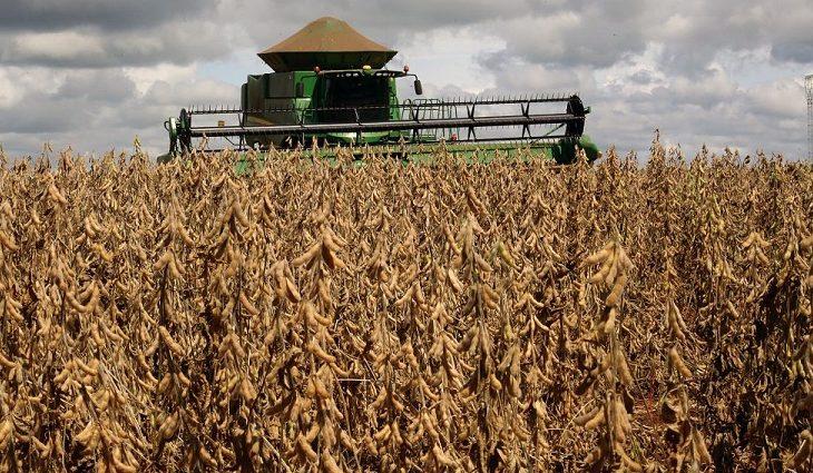 Investimentos em rodovias, pontes e estradas contribuem com escoamento da produção de soja em MS