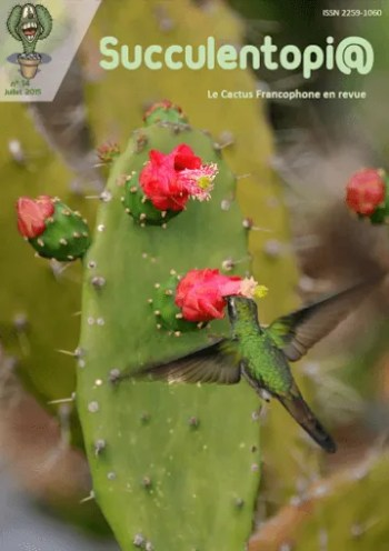 Revista de cactus