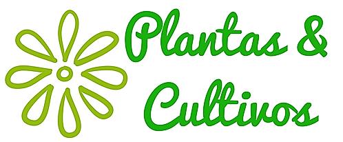 Plantas & Cultivos