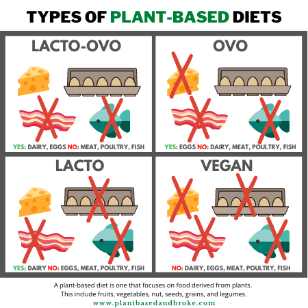 Graphic/chart explaining the difference between lacto-ovo, ovo, lacto, and vegan, plant-based diets