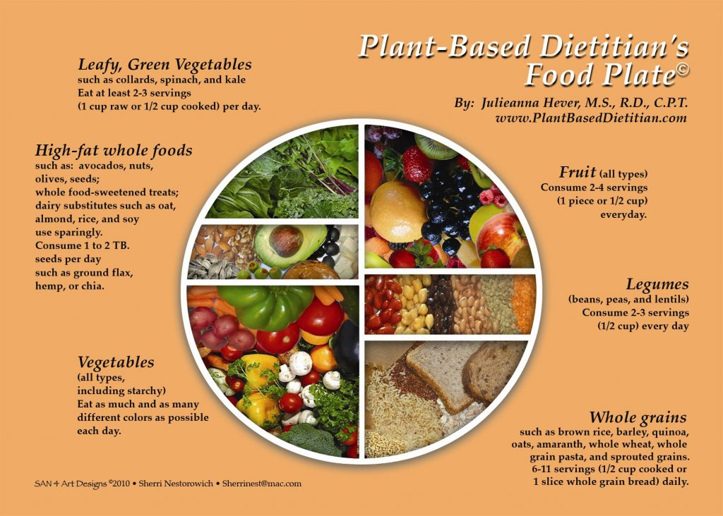 diagram food guide ce lancer wiring vegan plate data the plant based pyramid and dietitian continental there are