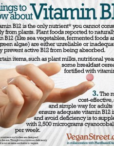 Vitamin  is produced by microorganisms found in the soil and guts of animals which how they end up their flesh because modern society also three things to know about plant based dietitian rh plantbaseddietitian