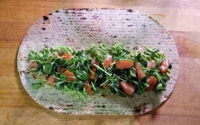 Make Your Own Protein Wraps Grown Your Own Protein Sprouts