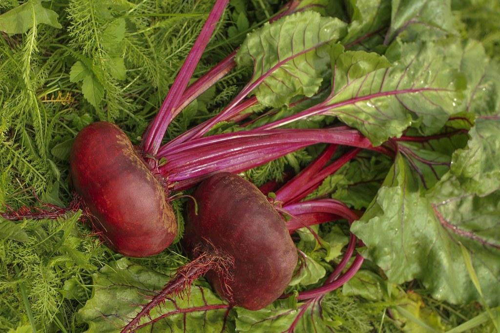 Fresh organic sliced beets,
