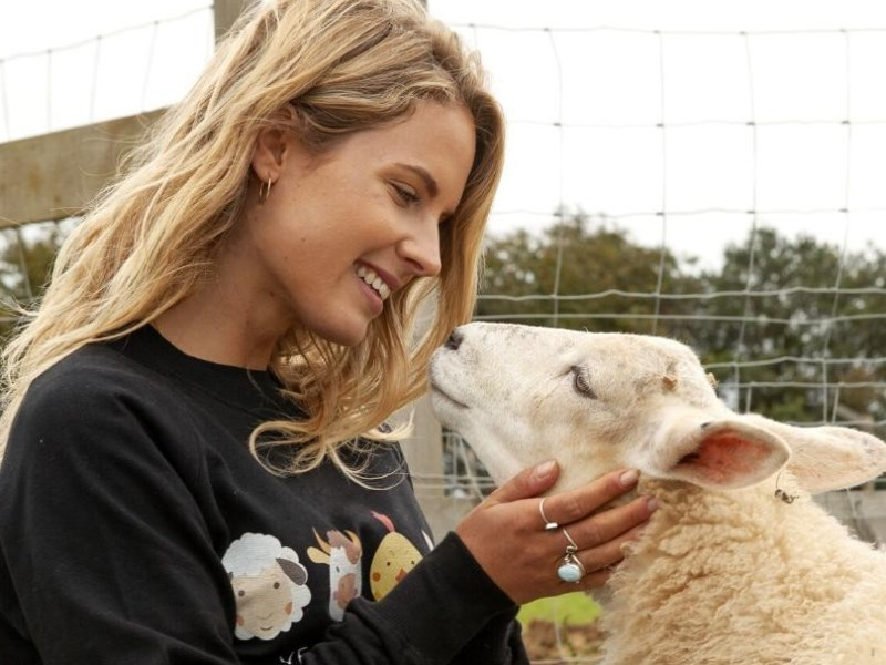 Donate to these five vegan charities this Christmas