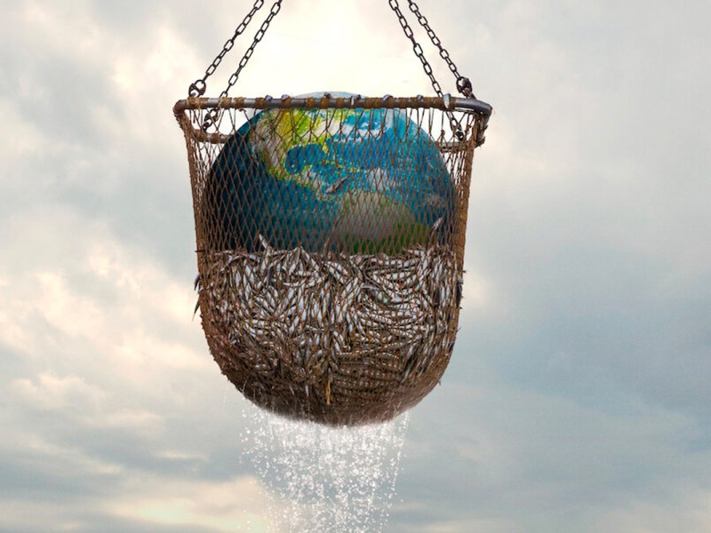 An image of fish in a net, with a giant ball shaped like the Earth. Promo for the Seaspiracy documentary