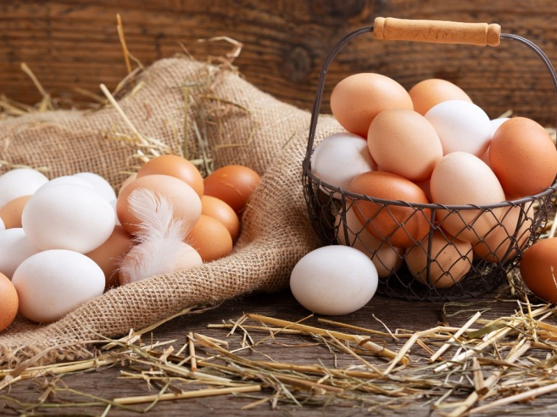 Vegan eggs: are they healthy? What do they taste like?