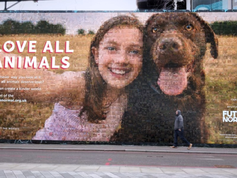 The Vegan Society launched the Future Normal campaign with a giant billboard that reads: 'Love All Animals'